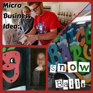 Micro Business Idea: Snowballs